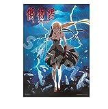 【Amazon.co.jp限定】傷物語<II熱血篇> B2布ポスター付通常前売券 [DVD]