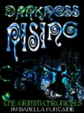 Darkness Rising (The Grimm Chronicles)