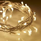 Indoor Fairy Lights, 40 Warm White LEDs on Clear Cable by Lights4funby Lights4fun