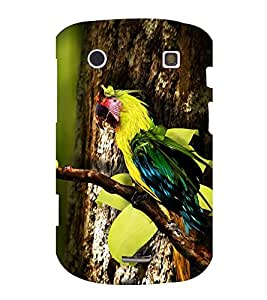 printtech Wild Colorful Parrot Tree Back Case Cover for BlackBerry Bold Touch 9900 :: BlackBerry Dakota :: BlackBerry Magnum