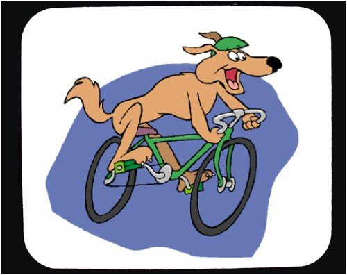 Dog on a Bicycle