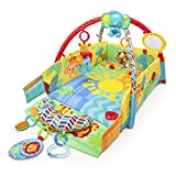 Bright Starts Sunny Safari Babys Play Place
