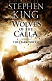 Stephen King Wolves of the Calla: 5/7 (Dark Tower)