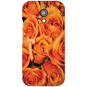 Motorola Moto G (2nd Gen) Back Cover - Abstract Designer Cases