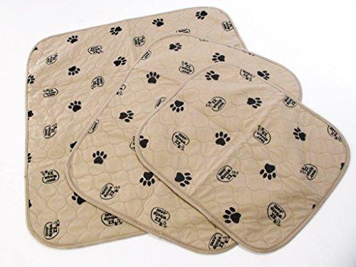 EZwhelp Dog Mat / Pee Pad 19.5x24.5 (Value 2-Pack)