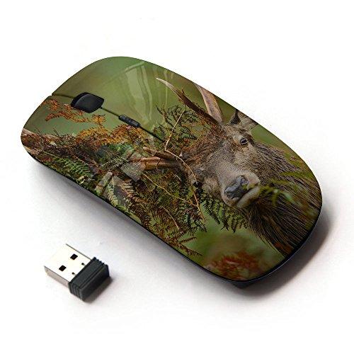 xp-tech-optical-24g-wireless-mouse-mice-sear-turtle