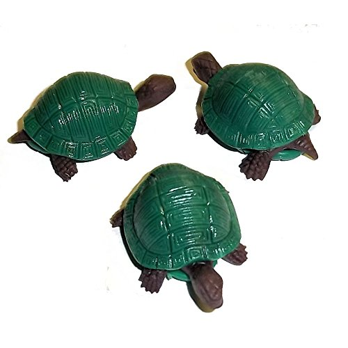 Fun Express Strechy Turtles (2 DOZEN) - BULK Novelty