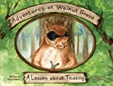 Adventures at Walnut Grove: A Lesson about Teasing (Walnut Grove Series)