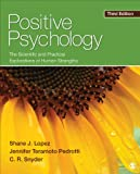 img - for Positive Psychology: The Scientific and Practical Explorations of Human Strengths book / textbook / text book