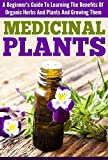 Medicinal Plants -  A Beginners Guide to Learning the Benefits of Organic Herbs and Plants (Guide Book For Medicinal Plants, Organic Herbs And Plants, ... Cure, Medicinal Plants For Beginners)