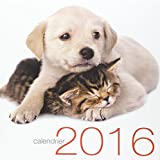Calendrier mural Chats et chiens 2016...