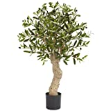 Nearly Natural 5331 Olive Silk Tree, 2.5-Feet, Green