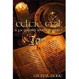 Celtic Evil: A Fitzgerald Brothers Novel: Ian