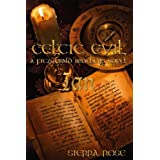 Celtic Evil: A Fitzgerald Brothers Novel: Ian ~ Sierra Rose