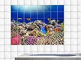 Graz Design 761661_15x15_70 Fliesenaufkleber Fliesendekor Bad Küche Natur Fliesensticker Fische