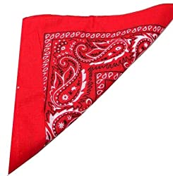 Red Paisley Bandana (Centre Patterned)