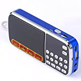 Portable Multifunctional Digital Tunable AM FM Radio Hi-Fi MP3 Music Player Support TF Card / U-Disk and Aux Line-In with LED Screen Display and Emergency Flashlight (Blue)