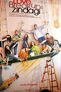 Love Breakups Zindagi (2011) (Hindi Movie / Bollywood Film / Indian Cinema DVD)