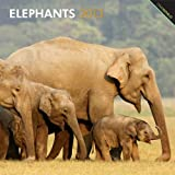 BrownTrout Publishers Elephants 2013 Wall