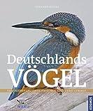 Deutschlands Vögel: Die Vögel unserer Heimat