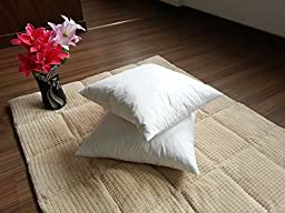 Pair Of Down and Feather Pillow Insert