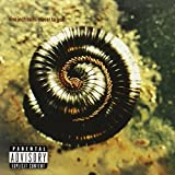 Closer to God by Nine Inch Nails (1994-05-19)