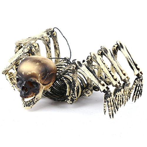 Scary Skeleton Sinister Skull with Lantern Halloween Kitchen Decor Decoration