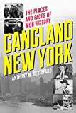 img - for Gangland New York: The Places and Faces of Mob History book / textbook / text book