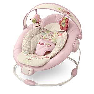 Bright Starts Comfort and Harmony Bouncer, Vintage Garden (Discontinued by Manufacturer)
