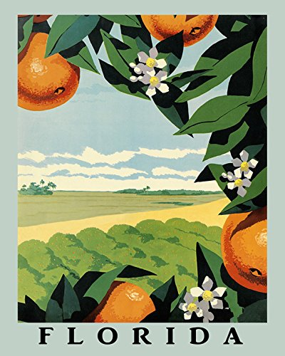 sunshine-florida-16-x-20-orange-fruit-juice-american-fruit-u-s-a-farm-vintage-poster-repro-16-x-20-s