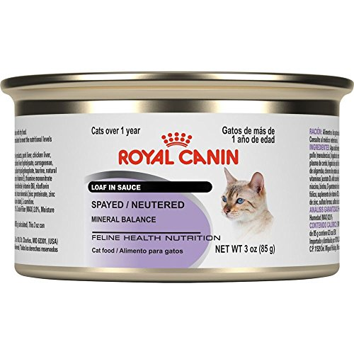 Royal Canin Feline Health Nutrition Spayed/Neutered Loaf In Sauce
