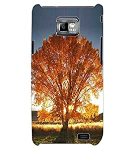 ColourCraft Beautiful Tree Design Back Case Cover for SAMSUNG GALAXY S2 I9100