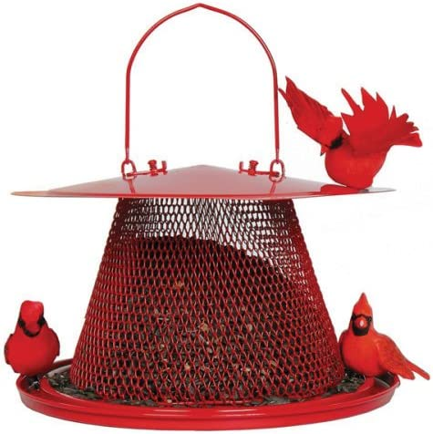 Up to 71% off Perky-Pet Bird Feeders