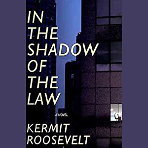 In the Shadow of the Law Audiobook
