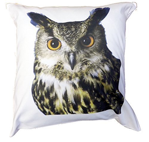 Owl Face Cushion and Cover