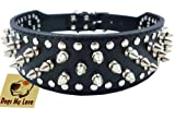 "19""-22"" Black Leather Spiked Studded Dog Collar 2"" Wide, 37 Spikes 60 Studs, Pitbull, Boxer"
