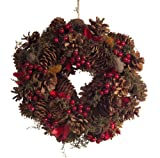 BraunsHeitmann 80075 Hanging Wreath with Pine Cones and Fruit Natural Red 25 cm