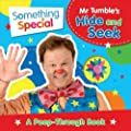 Something Special Mr Tumble's Hide and Seek: A Peep-Through Book