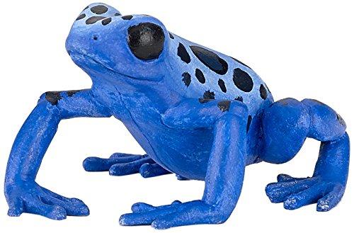 Equatorial Blue Frog - 1