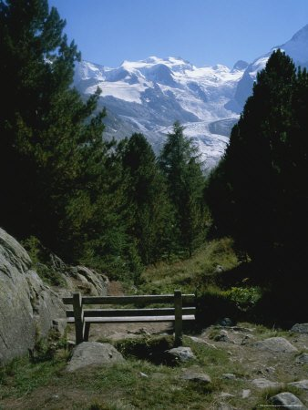 A Bench on a Hiking Trail with a View of the Morteratsch Glacier Artists Photographic Poster Print, 18x24