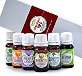 Image of Aromatherapy Top 6 - 100% Pure Therapeutic Grade Basic Sampler Essential Oil Gift Set- 6/10 ml Kit