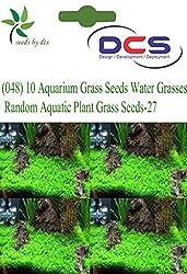 DCS (048)10 Aquarium Grass Seeds Water Grasses Random Aquatic Plant Grass Seeds-27