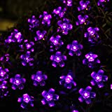 Innoo Tech Garden Fairy String Lights Solar Powered for Outdoor, Patio, Porch, Lawn, Chrismas tree, Outside Party, Wedding(50 Purple Blossom)