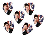Noel Gallagher Oasis High Flying Birds 6 X Loose guitar Picks ( Flag Design )