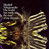 echange, troc Meshell Ndegeocello - World Made Me the Man of My Dr
