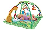 Fisher-Price Rainforest Melodies and Lights Delux