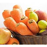 にんじんジュース定番セット 無農薬にんじん5kg りんご5個 レモン5個が入ったお試しセット
