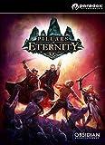 Pillars of Eternity Hero Edition [Online Game Code]
