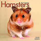 Avonside Publishing Hamsters 2014 (Calendar 2014)