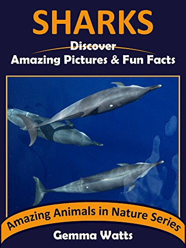 Free Kindle Book : SHARKS: Discover Amazing Pictures and Fun Facts (Amazing Animals in Nature Series Book 8)